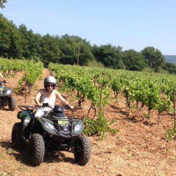 Balade en quad au coeur des vignes